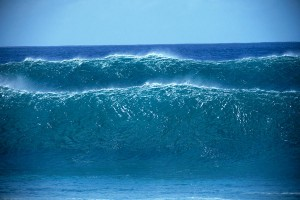 sustainability data management software waves